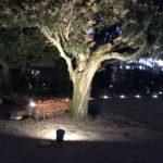 目黒のスポット紹介④ 〜東京都庭園〜